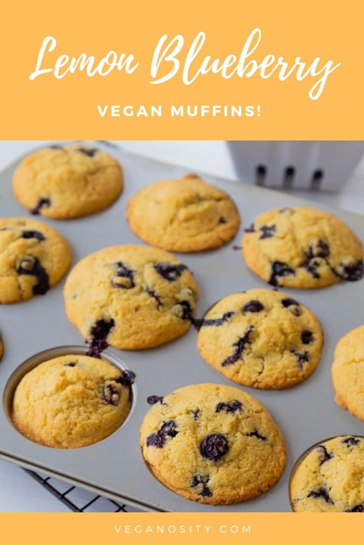 Our vegan lemon blueberry muffin recipe has a light crisp surface and a tender crumb on the inside. Easy to make and delicious! #vegan #muffins #blueberry