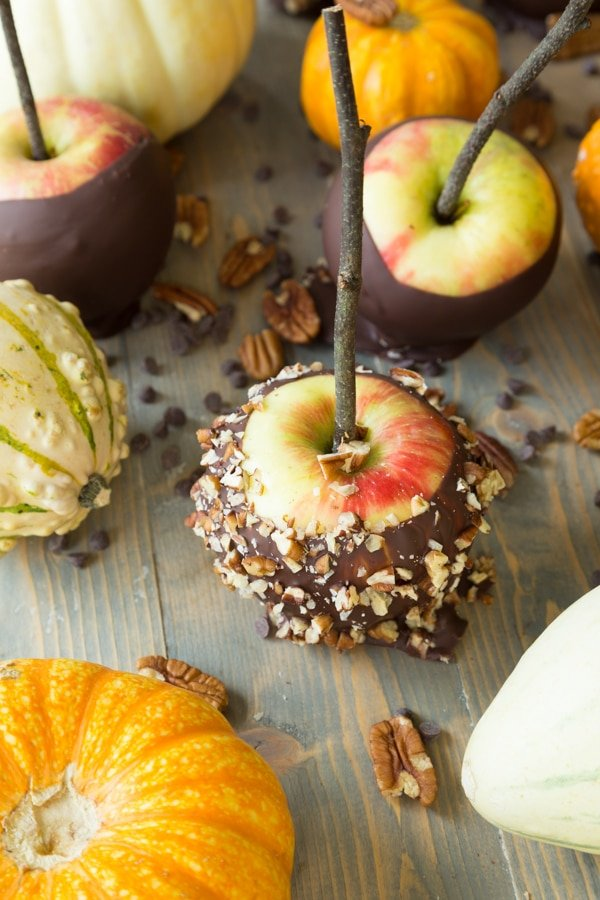 Chocolate covered apples, some with chopped nuts, and white and orange pumpkins scattered on a wood surface