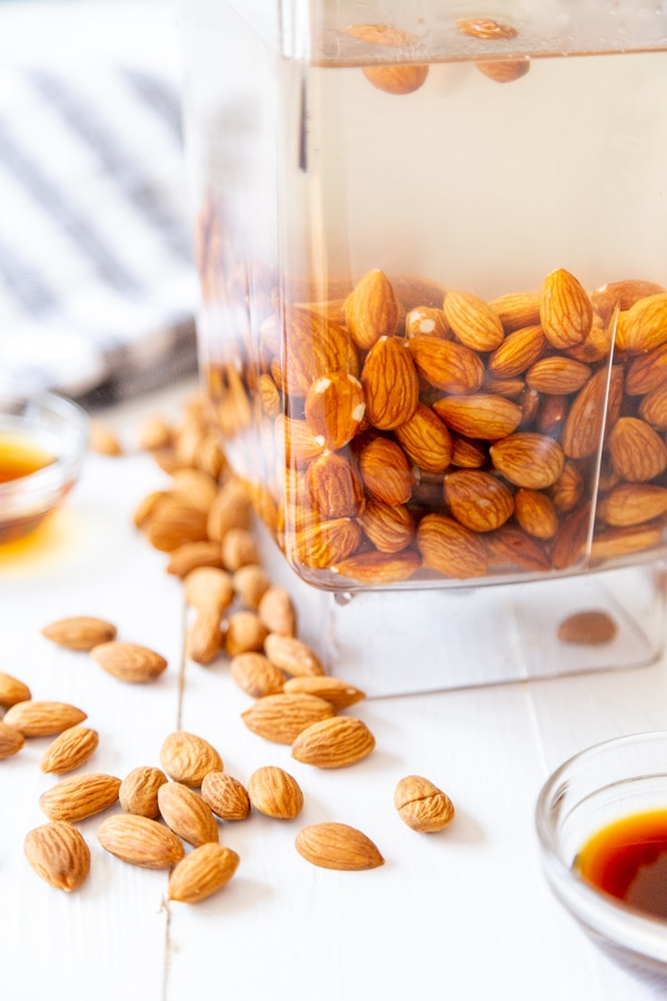 A blender pitcher filled with water and almonds with almonds scattered next to it.