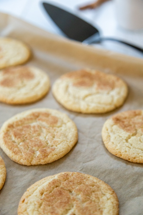 Cookies with sugar and cinnamon on top on a parchment lined baking sheet.